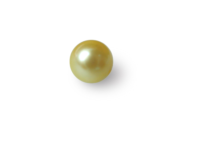 7.5mm AAA+ Half Drilled Saltwater Golden Loose Pearl Beads - 1 Pcs -ls10