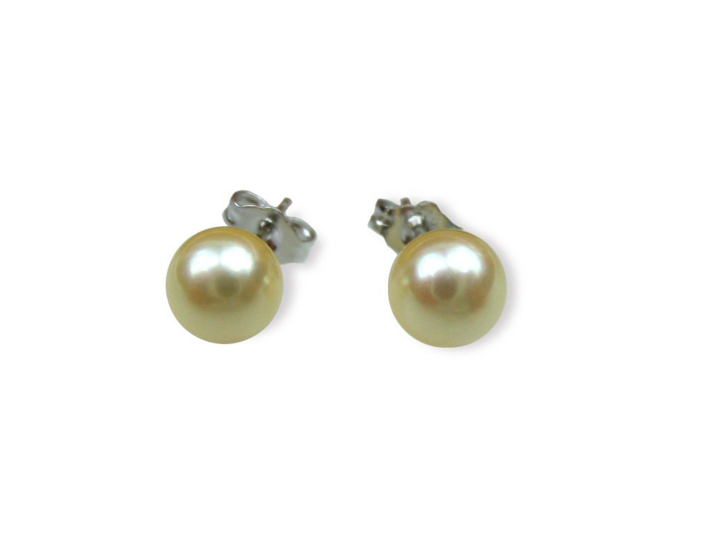 AAA+ Golden Akoya Pearl Earrings - Various sizes -er19