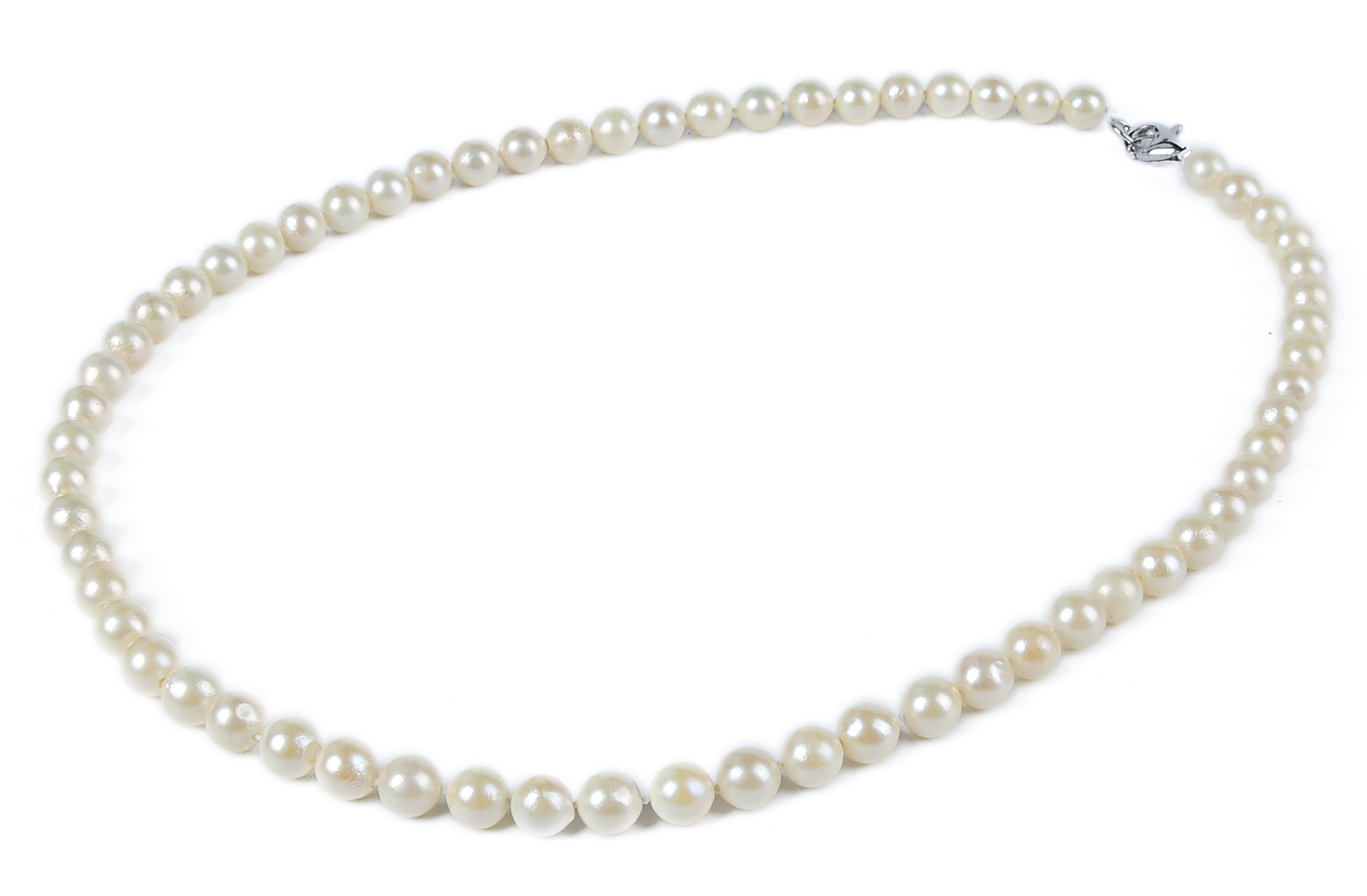 6.5mm AA+ Cream Akoya Cultured Pearl Strand Sku#: nk118