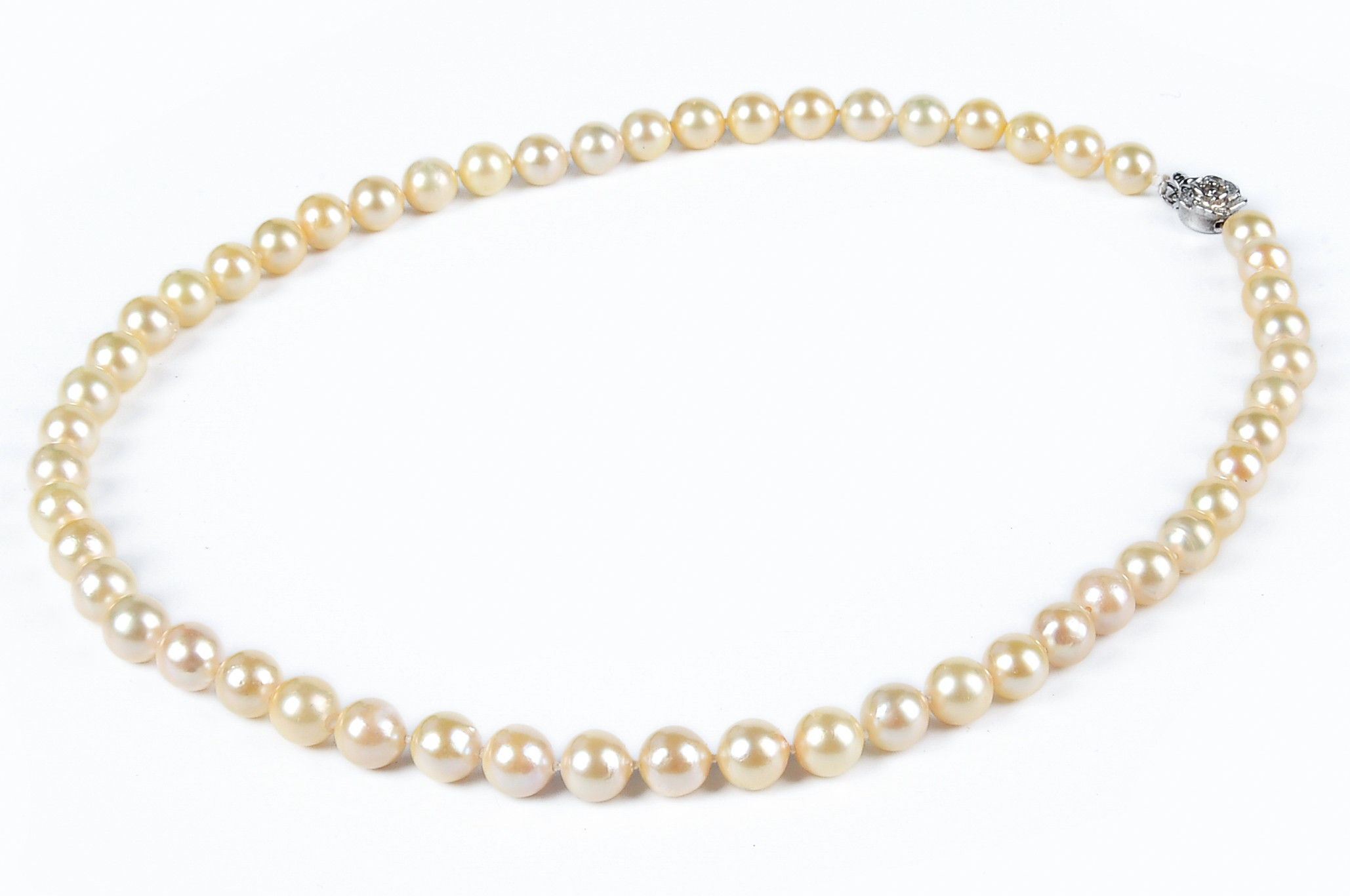 oh pinctada for posts is medium sea round golden mm the style produced post grade sale pearls and pearl shape by measurement status south good a party maxima cutting