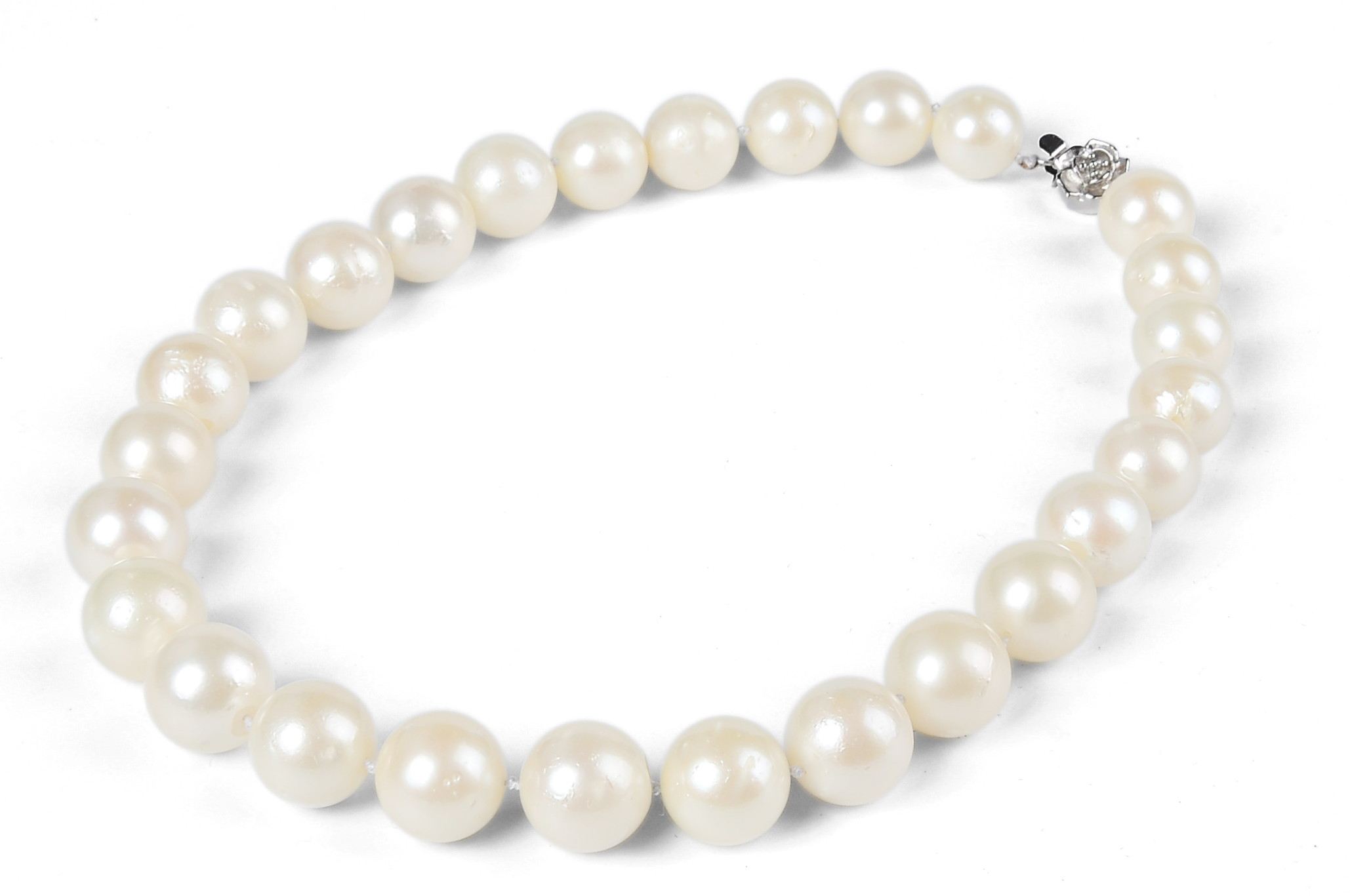 Huge 13.5mm Cream South Sea Pearl Choker Necklace 15