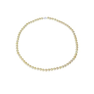 6mm AAA- Golden Akoya Cultured Pearl Necklace silver claslp - nk20