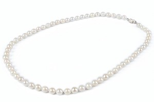 6.5mm AA+ Single Strand Saltwater Cultured White Akoya Pearl Necklace Sku#: nk91
